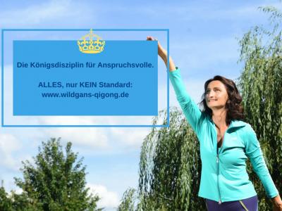 Qigong Intensiv-Workshop 24. April Rhein-Main: DAYAN für Sportler und geistig Anspruchsvolle