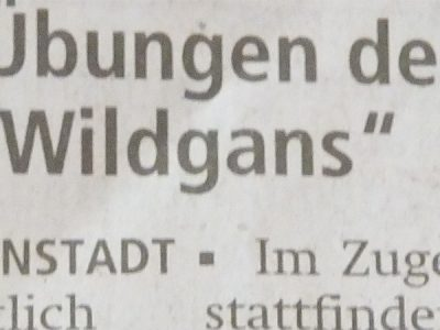 "Vortrag ""Wildgans Qigong"" Rheuma-Liga Seligenstadt (Kreis Offenbach)"