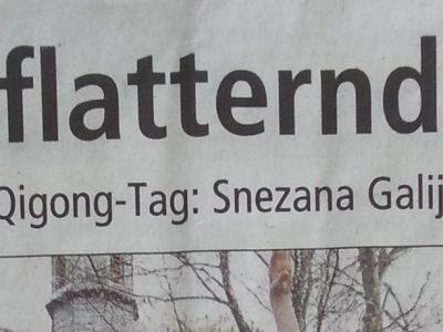 Pressebericht Offenbach Post: Welt-Taichi- und Qigong-Tag: Die flatternde Frau
