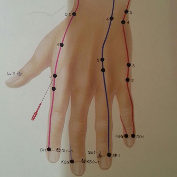"""Meridiane Handaussenseite 1 Hand- und Fingermeridiane und warum das """"Flattern"""" so gut ist"""