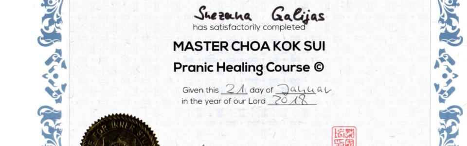 Pranaheilung-PH1-Zertifikat-Snezana