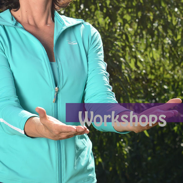 Wochenend-Workshop Wildgans Qigong 25./26. April 2020 Seligenstadt
